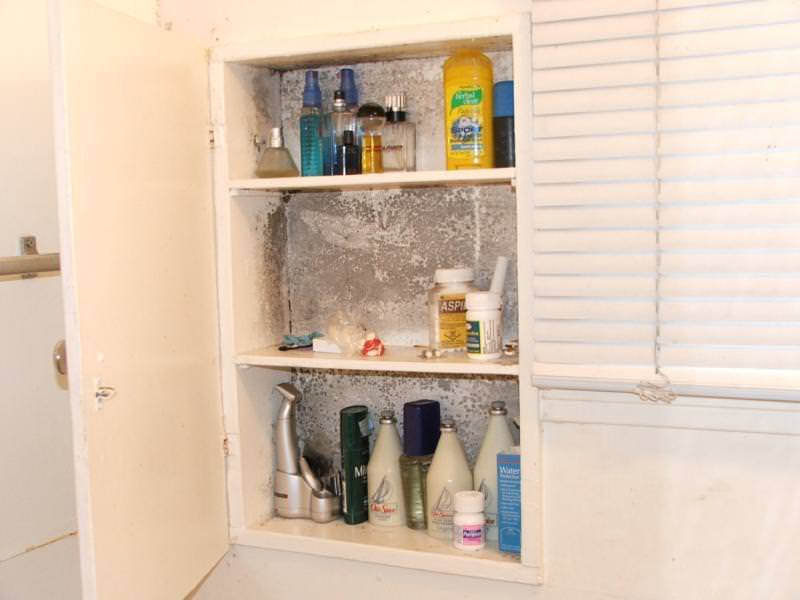 Mold In Bathroom Cabinet there is something growing in my medicine cabinet! - charles buell