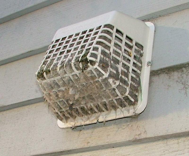 Dryer Vent Roof Cap Clogged Dryer Vent Cap