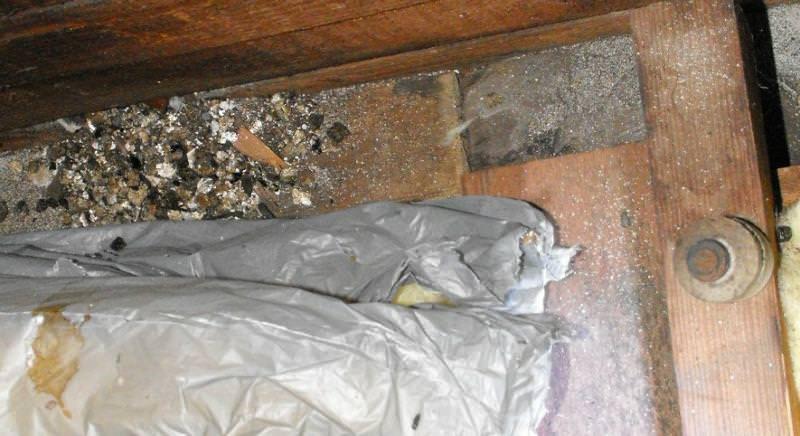 Vermiculite Insulation in an attic