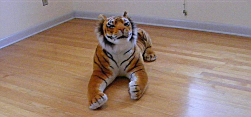 Hidden tigers