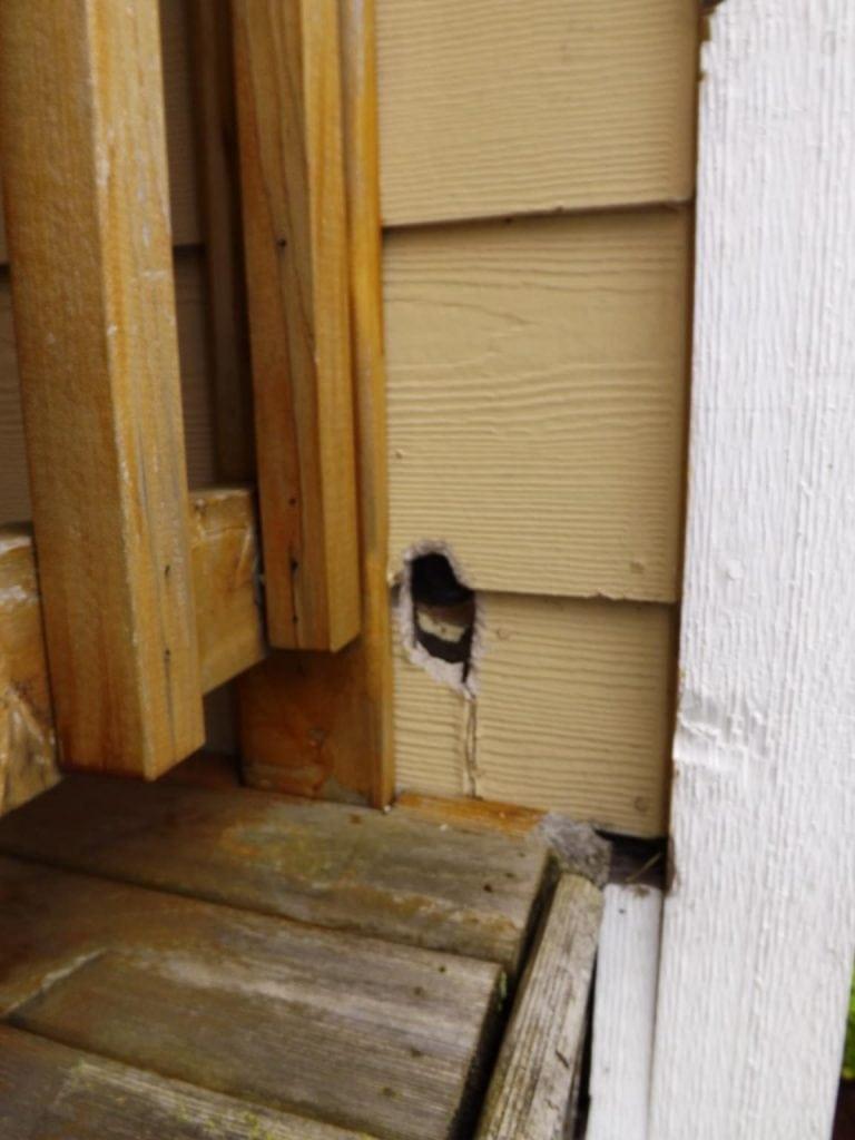 Rat hole through cement board siding
