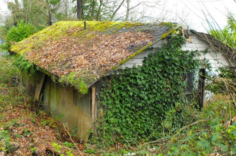 House beyond saving