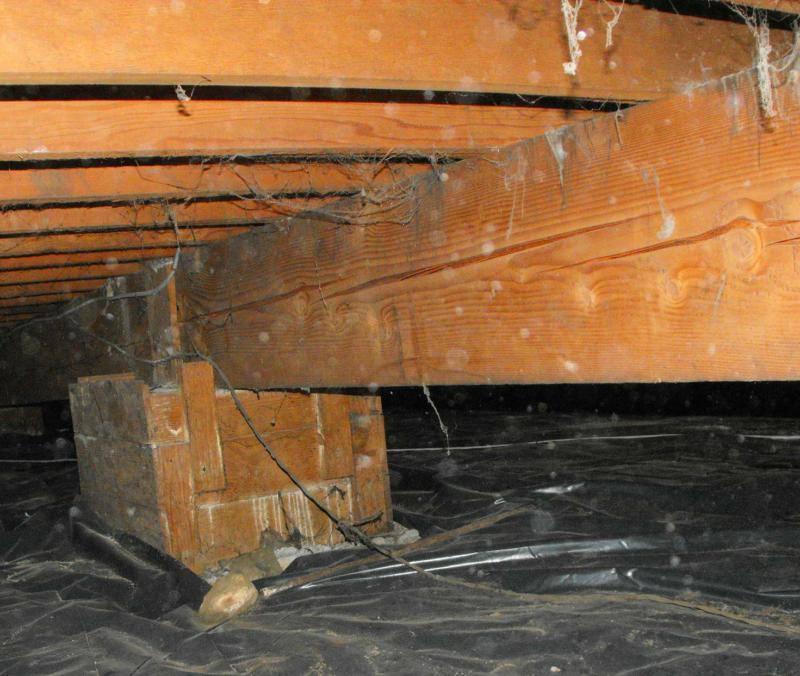 Very large wood beam