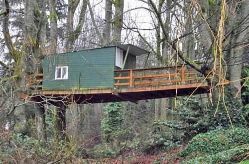 Tree house? Bridge? Hammock?