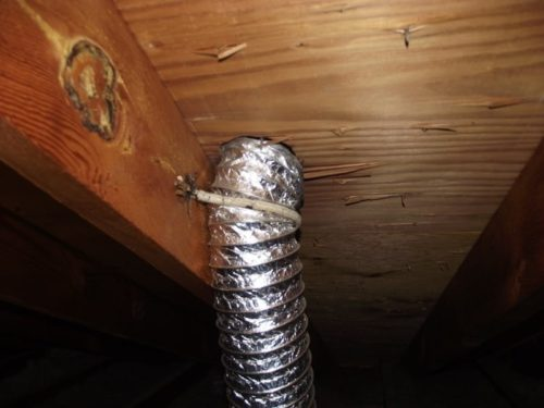 Vent pipe terminating at roof?