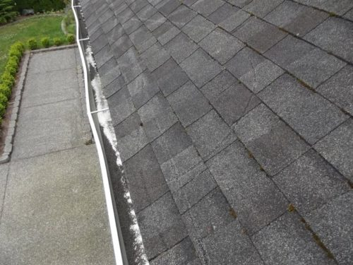pressure-washing-roofs2
