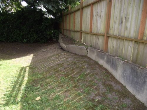 Retaining wall pushed out at location of former tree
