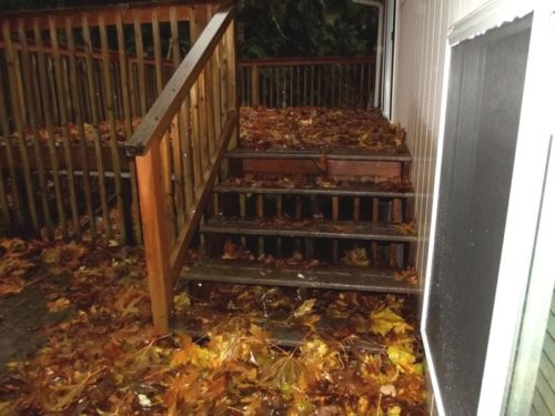 Too much debris on the deck